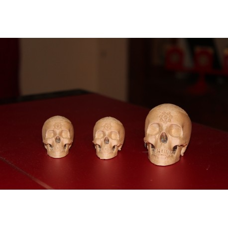 Skull Set for Chop Cups